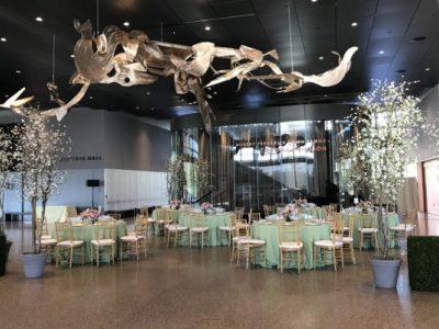 National Museum of African Art Washington DC Venue